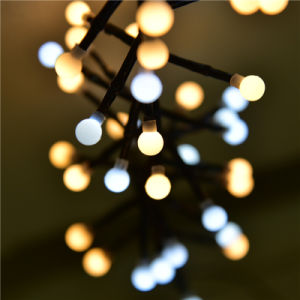 Ce&RoHS Approved 3m400LED Warm White and White Firecracker LED String Light pictures & photos