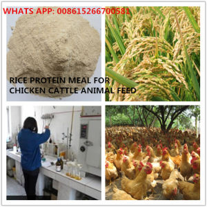 Rice Protein Meal 65% Protein for Animal Feed pictures & photos