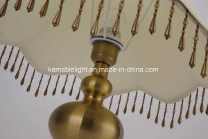 Indoor Decorative Copper Table Lamp for Home and Hotel (DT-8008) pictures & photos