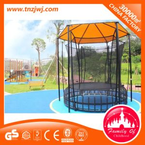 Trampoline Park, Outdoor Trampoline Bed with Net Manufacturer for Sale pictures & photos