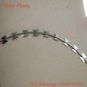 Security Used Razor Barbed Wire Galvanized pictures & photos