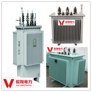 Oil-Immersed out-Door Transformer/ High Voltage Transformer