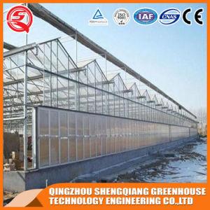 Venlo Vegetable/ Garden/ Fram Tempered Glass Green House pictures & photos