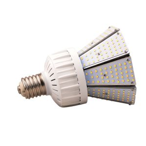 Philips Chips Meanwell Driver UL Dlc ETL SAA Listed 80W Low Voltage Garden Lighting pictures & photos