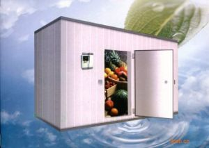 Cold Room for Fruits and Vegetables Walk in 50 Ton pictures & photos