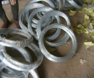 Galvanized Iron Wire /Galvanized Binding Wire/Gi Binding Wire pictures & photos