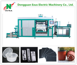 Automatic Disposable Plastic Cup Cover Lid Making Vacuum Thermoforming Machine