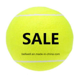 Advertising Display Promotion Jumbo Ball pictures & photos
