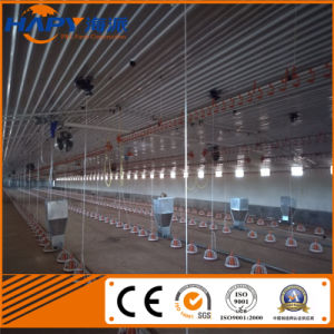 Prefab Poultry House with Full Set Poultry Farming Equipment pictures & photos