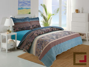 Embrossed Bedding Set/Quilts/Bedspread pictures & photos
