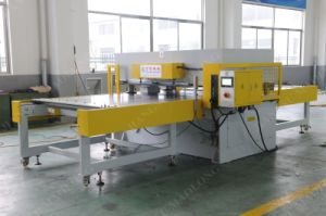 Maolong Single-Side Plastic Tray Cutting Machine pictures & photos
