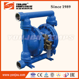 Air Operated Double Diaphragm Pump (QBY) pictures & photos