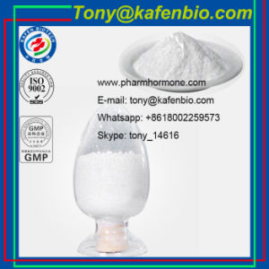 CAS 9012-76-4 Pharmaceutical Grade Raw Material Chitosan for Food