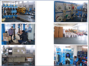 Sc/APC- LC/Upc Duplex Optical Fiber Pacth Cord pictures & photos