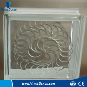 Standard Size Figtured Nautilus Glass Block pictures & photos