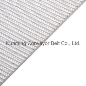 ECM120/2: 0+0/2.0W Conveyor Belt PVC Food Grade Light Industry pictures & photos