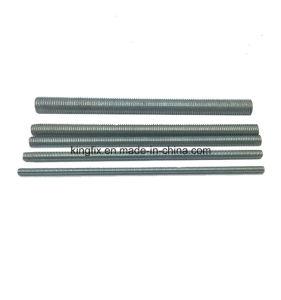 Threaded Rod/Threaded Screw Rod/Screw Rod