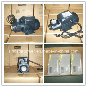 Qb 60 Water Pump 0.5 HP with Brass Impellor pictures & photos