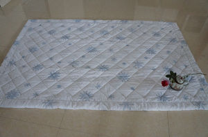 Cheap Best Time Summer Quilt with Outstanding Quality From China pictures & photos