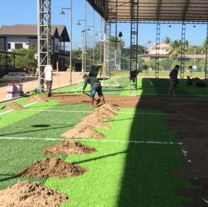 Good Quality Artificial Turf for Sports pictures & photos