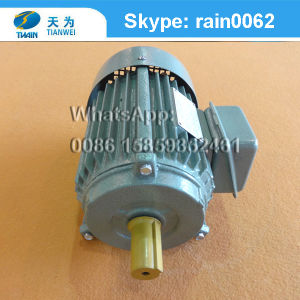 Y Three-Phase Asynchronous Squirrel-Cage Cast Iron Induction Electric Motor pictures & photos