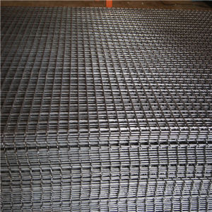 50*50mm, Galvanized Welded Wire Mesh Panel