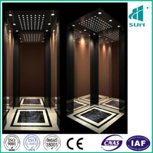 Sum Elevator with Luxury Suspended Ceiling pictures & photos