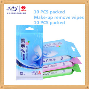 10 PCS Individually Wrapped Wet Wipes in One Portable Plastic Bag pictures & photos