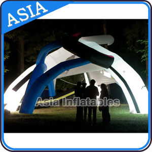 Giant Light-up Inflatable Exhibition Dome for Garden Party Events Wedding Colorful Lighting Bubble Tents pictures & photos