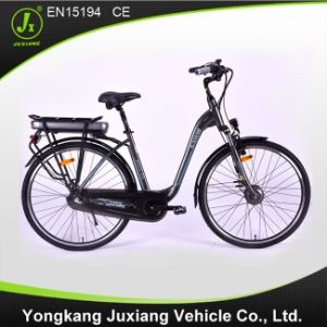 Long Range Carrier Battery Electric Urban Bike pictures & photos