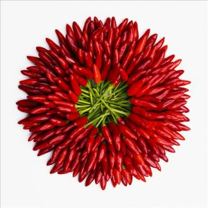Red Dried Chili Granule (60-80) pictures & photos