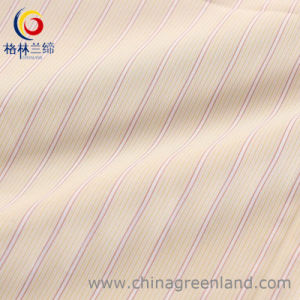 100%Cotton Yarn Dyed Stripe Fabric with Mercerized Finishing pictures & photos