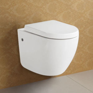 European Wall Hung Toilet with Concealed Cistern