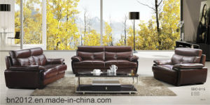 Living Room Genuine Leather Sofa (SBO-9115) pictures & photos