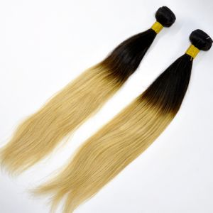Brazilian Virgin Straight Hair Ombre Color Human Hair Weft pictures & photos