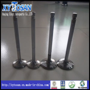 Intake & Exhaust Engine Valve for Hyundai H100/ Santro/ Accent/ Mighty/ Sonata (ALL MODELS) pictures & photos