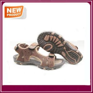 Comfort Sport Sandal Shoes Men pictures & photos