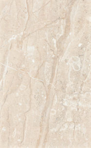 Kitchen & Bathroom Ceramic Wall Tiles (WP25425) pictures & photos