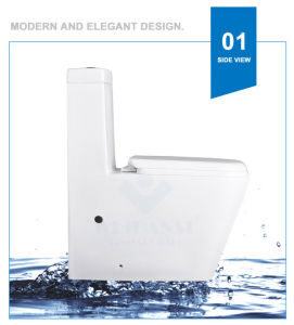 Weidansi Ceramic Wash Down S-Trap One Piece Toilet (WDS-T6106) pictures & photos