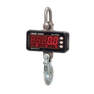 Small Hanging Scale and Fishing Scale pictures & photos