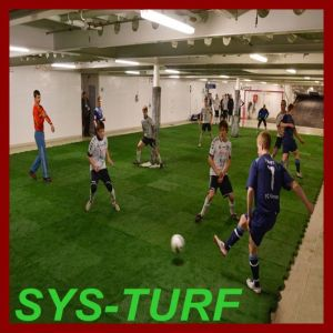 Removable Artificial Grass Turf for Multi-Sports Flooring pictures & photos