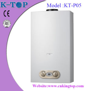 Wall Mounted LPG Gas Water Heater
