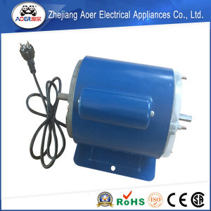 Exquisite Craftsmanship CE Certified Modern Design Two Shaft Motor pictures & photos