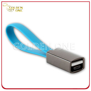 Promotion Gift New Design Metal Keyring with USB Data Line pictures & photos