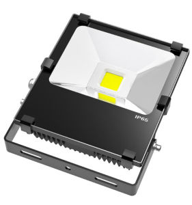 High Quality Outdoor 30W Flood Light LED for Track Lighting pictures & photos