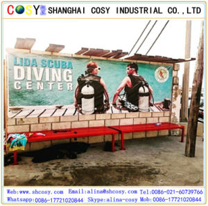 450g (500*300D) Matt Front-Lit Laminated Banner for Decoration and Printing pictures & photos