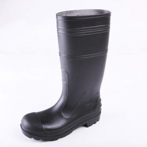 Industry Safety Boots with CE (DFSB1605) pictures & photos