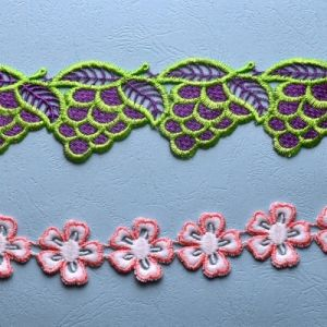 Lovely Embroidery Lace Trimming for Clothing pictures & photos