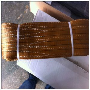 Polyester Flat Webbing Sling 10 Ton Web Sling, Crane Belt pictures & photos