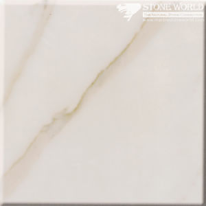 Polished Calacatta Grey Marble Slabs for Flooring & Wall (MT093) pictures & photos